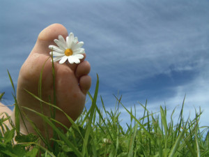 Foot with a daisy through the toes